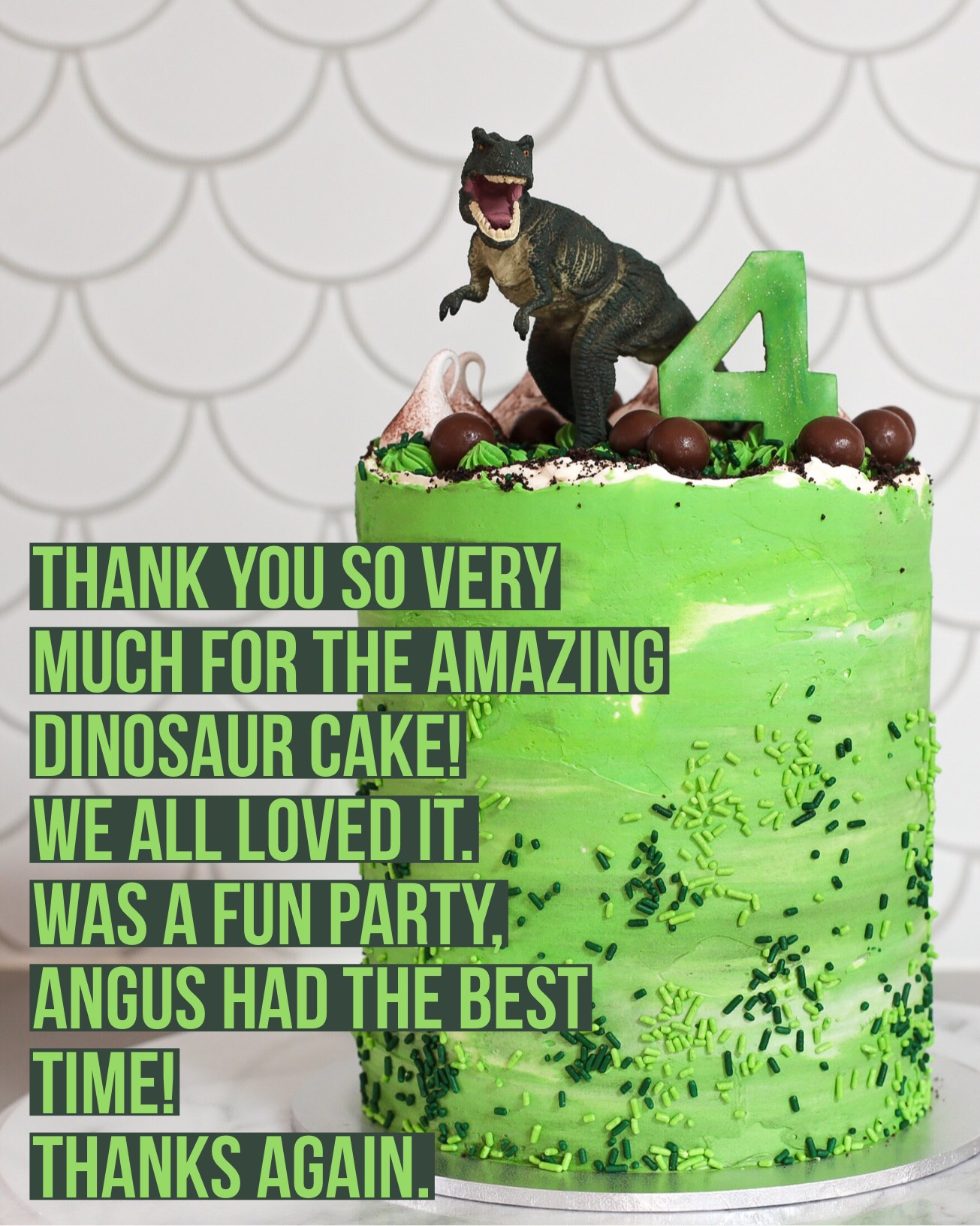 Sydney Cakes, Baked By Fiona dinosaur cake, a 6 inch tower cake
